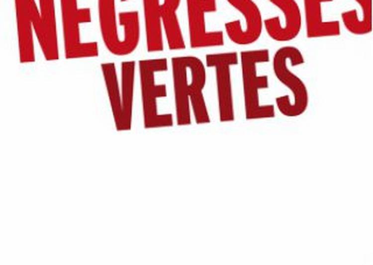 Les Negresses Vertes à Arles