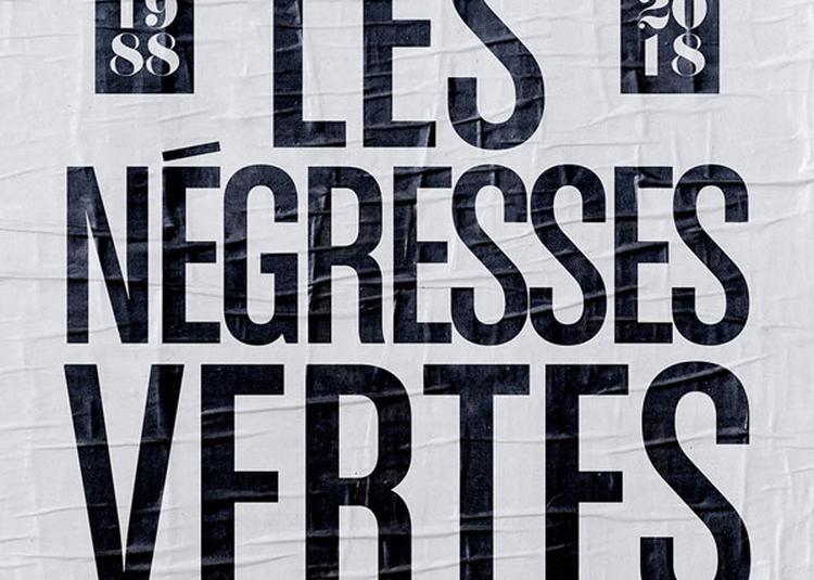 Les Negresses Vertes à Le Blanc Mesnil