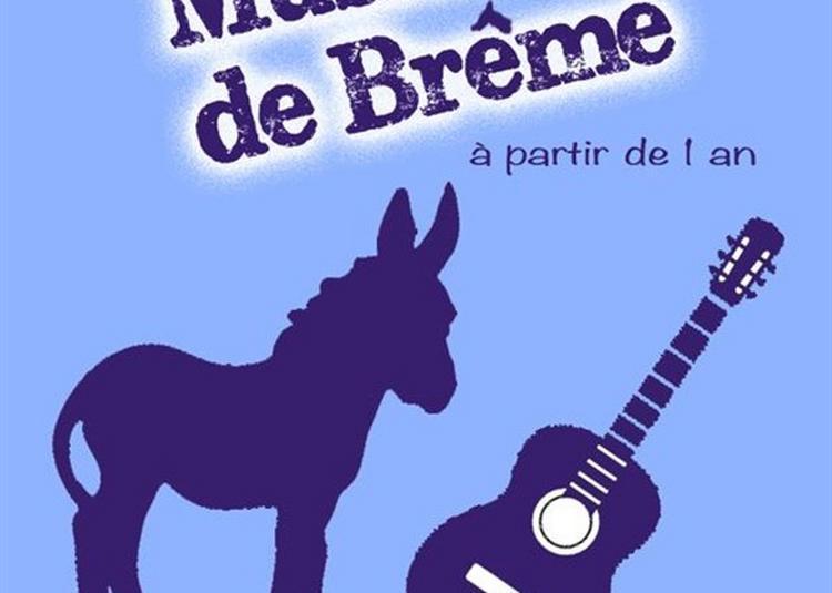 Les Nouveaux Musiciens De Brême à Nimes