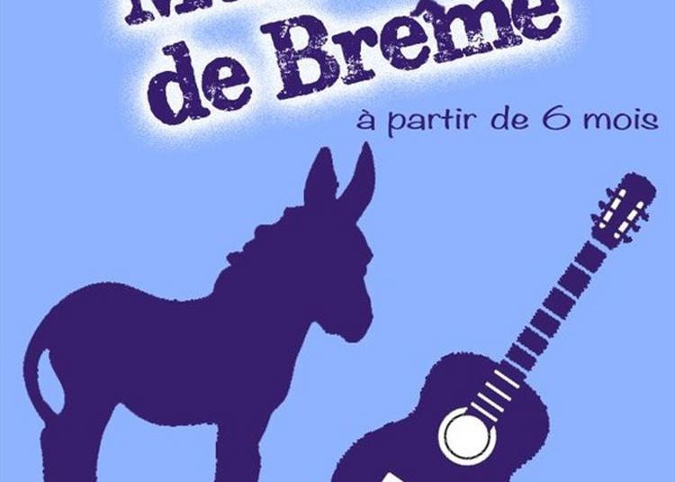 Les Nouveaux Musiciens De Brême à Avignon