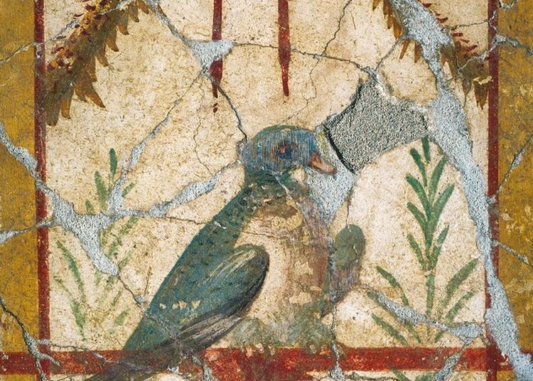 Les Peintures à Fresque Du Clos De La Lombarde à Narbonne