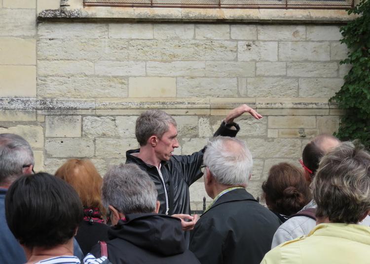 Les Pierres Et Les Fossiles De La Cathédrale à Bourges