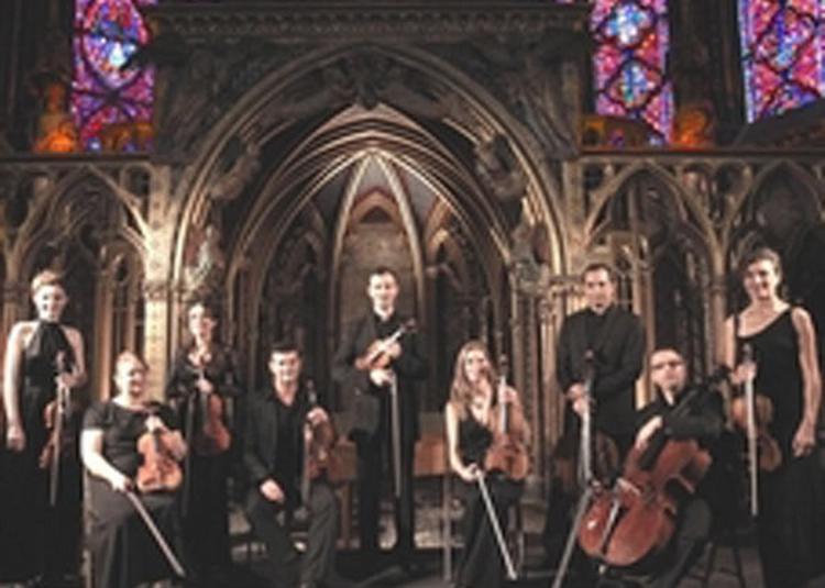 Les Quatre Saisons De Vivaldi à Paris 4ème