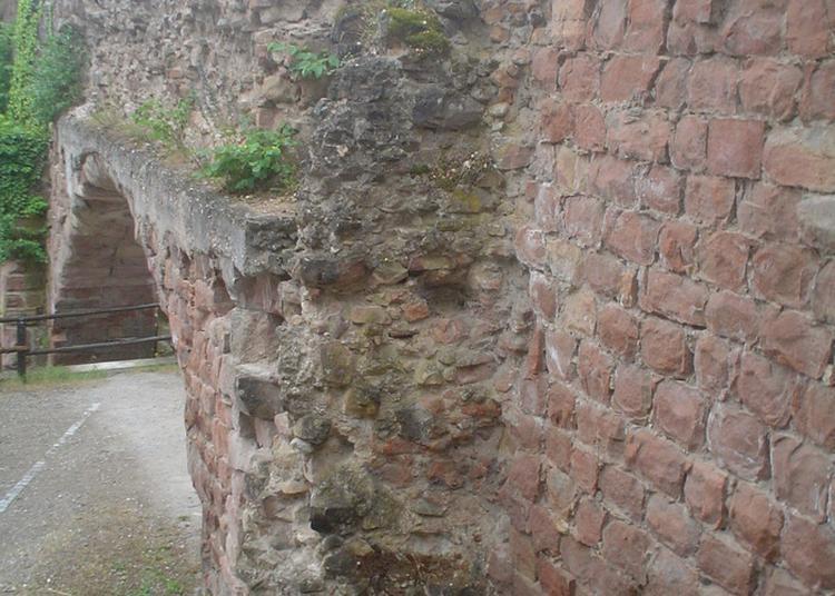 Les Remparts De Wissembourg