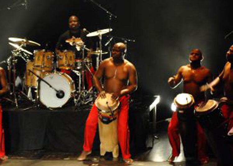 Les Tambours De Brazza à La Rochelle