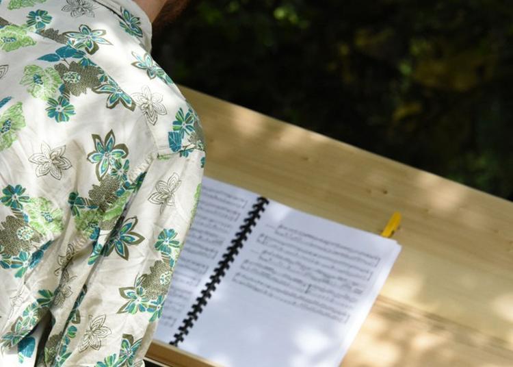 Le clavecin, six siècles de facture...dont quatre sans plan ? à Hericourt