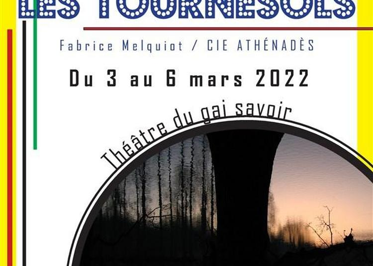 Les Tournesols à Lyon