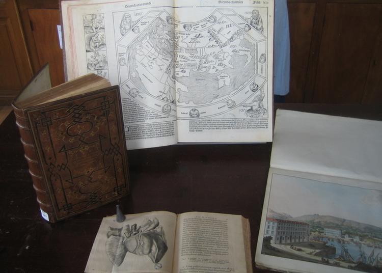 Les Trésors De La Bibliothèque à Nice