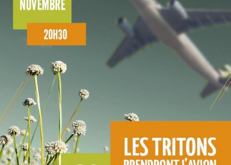 Les tritons prendront l'avion à Torcy