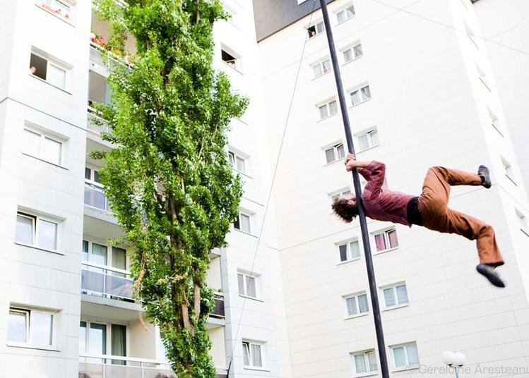 Les Vadrouilles (cirque / art de la rue) à Pau