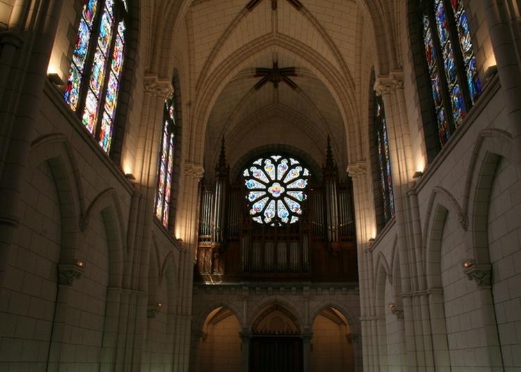 Les Voix Du Baroque, De Rome à Venise à Pau