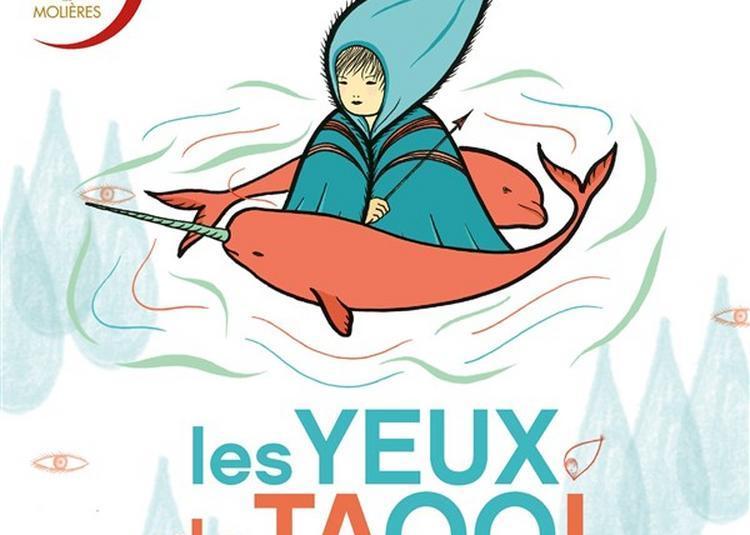 Les Yeux De Taqqi à Avignon