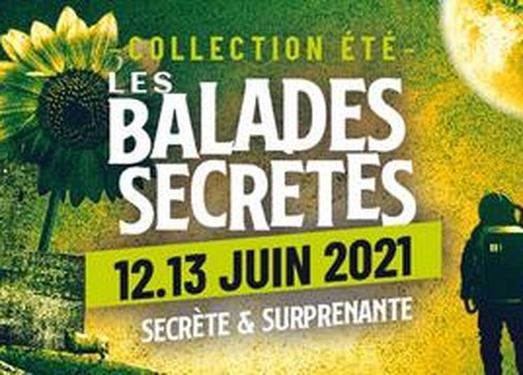 Les Z'eclectiques Collection été 2021