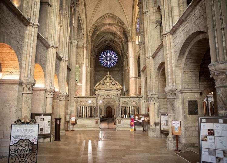 Levez Les Yeux Sur La Basilique ! à Reims