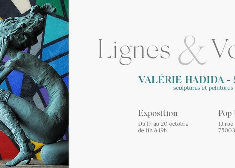 Lignes & Volumes à Paris 7ème