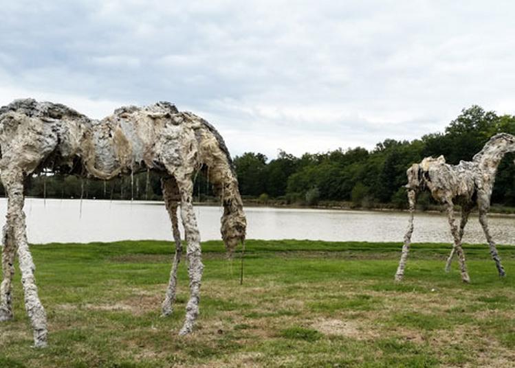 Lionel Sabatté, Sculptures à Toulouse