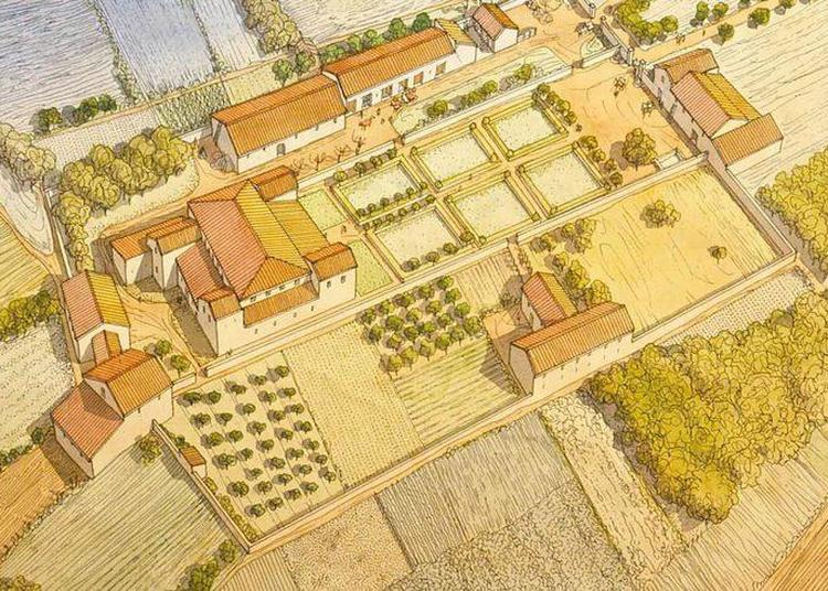 Luxe Et Quotidien Dans Les Villas Romaines De Sarreinsming à Bliesbruck