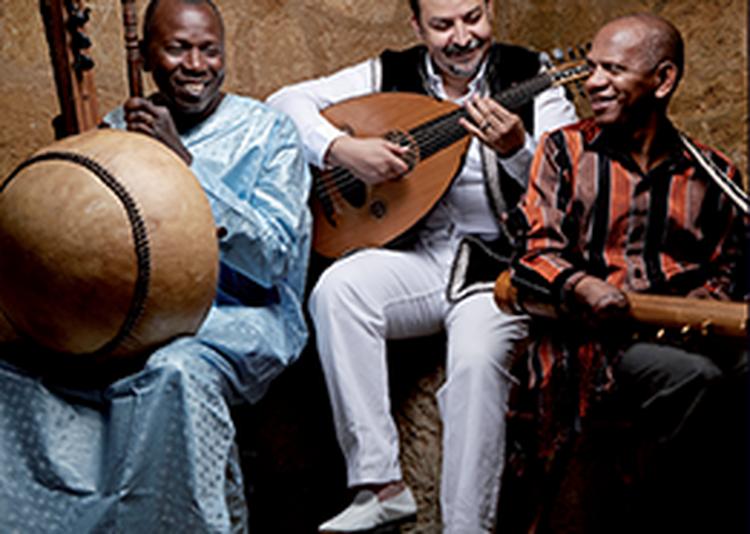 3MA - Ballaké Sissoko, Driss El Maloumi & Rajery à Betton