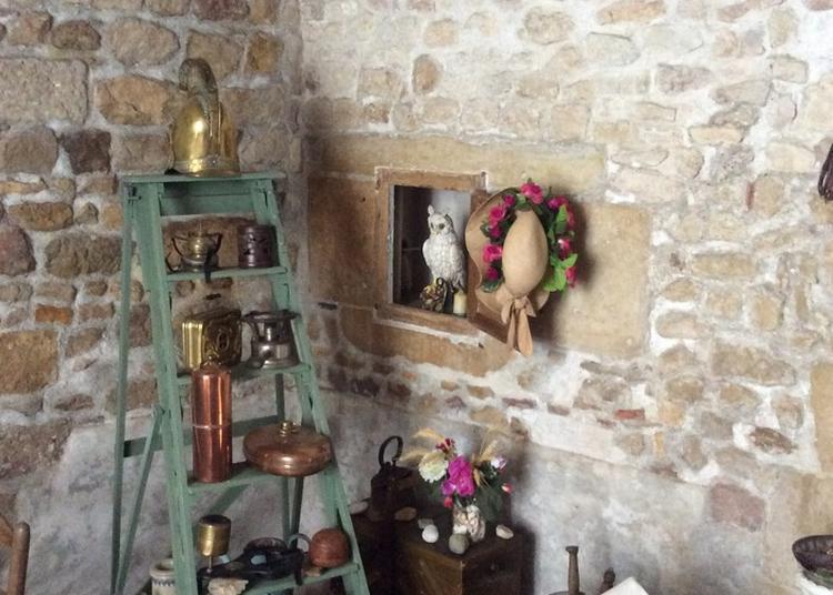 Maison Atypique - Cabinet De Curiosités De La Maison D'eugénie à Varzy