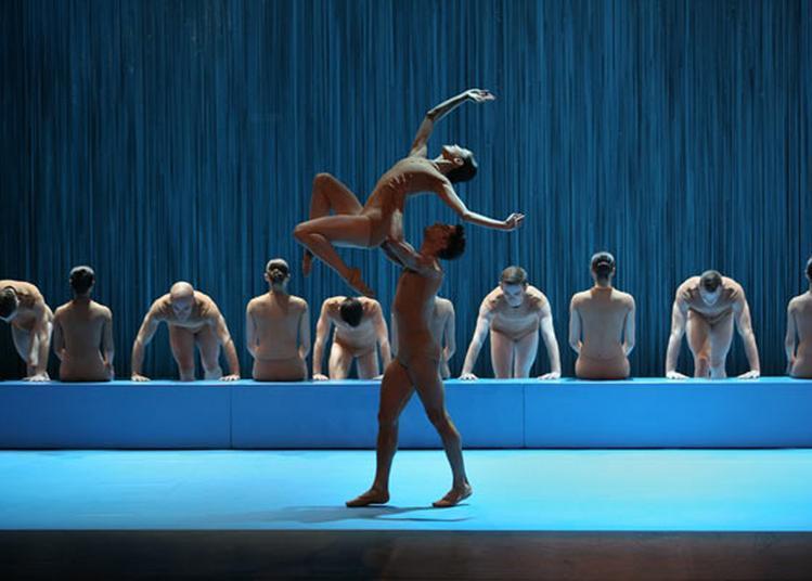 Malandain Ballet Biarritz à Lyon