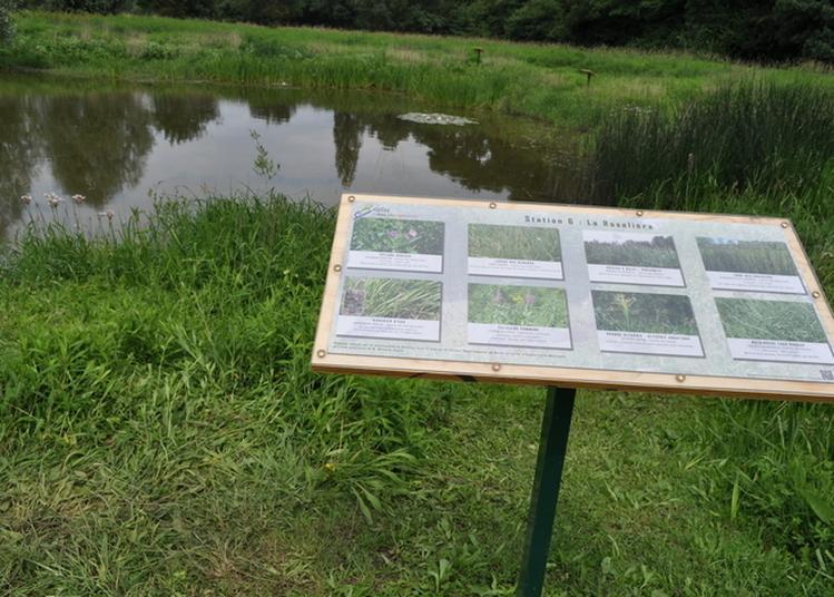 Marais Pédagogique à Briollay