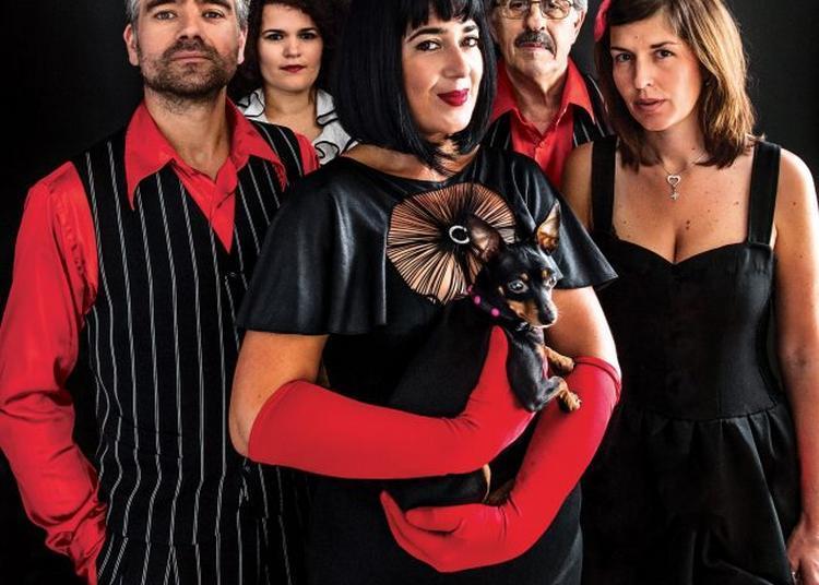 Maria Dolores y Amapola Quartet (humour musical) à Surgeres