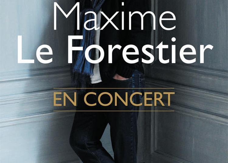 Maxime Le Forestier à Annecy
