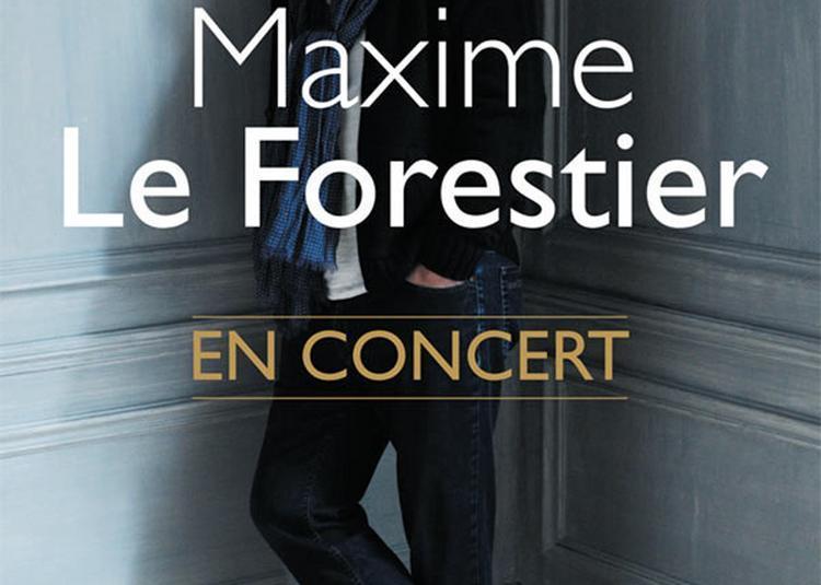 Maxime Le Forestier à Chasseneuil du Poitou