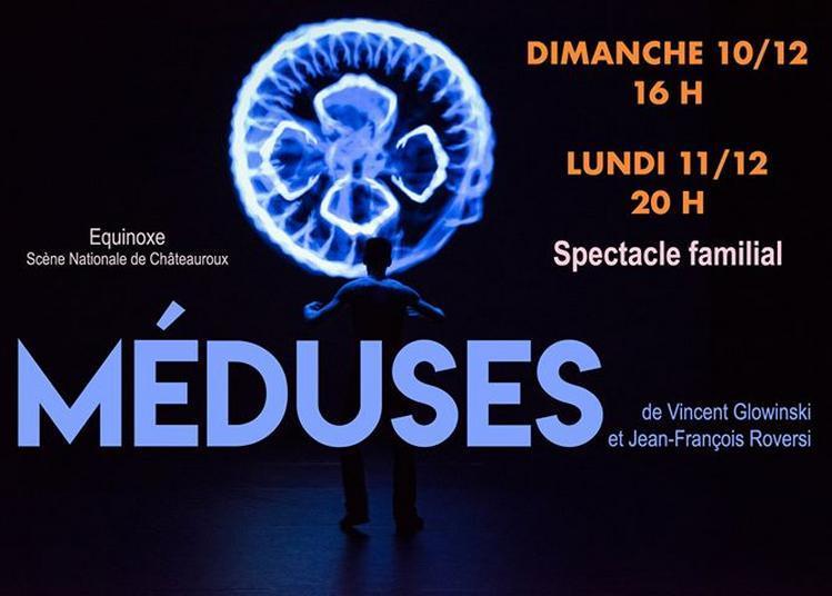 Méduses, de Vincent Glowinski et Jean-François Roversi à Chateauroux