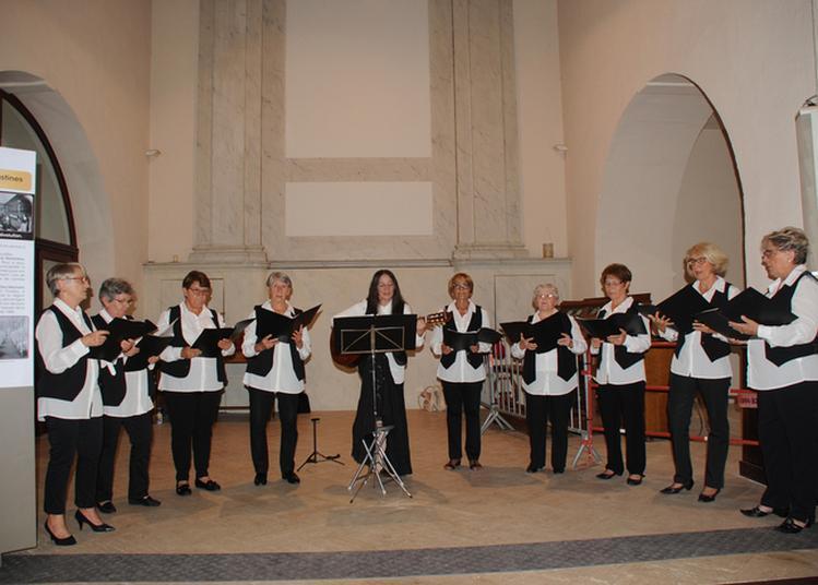 Mémoire Et Pause Musicale à Montbrison