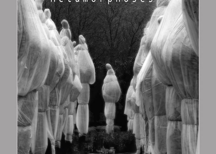 Métamorphoses  Photographie à Le Blanc
