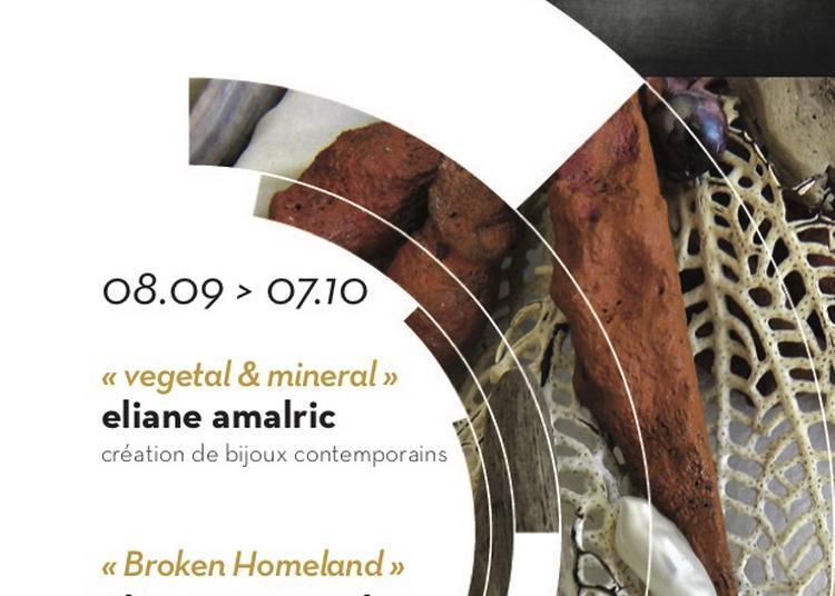 Mineral & vegetal et broken homeland à Saint Sauveur en Puisaye