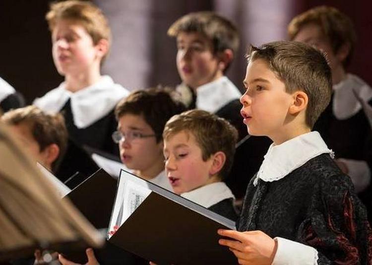 Mini-concerts De La Maîtrise Du Centre De Musique Baroque De Versailles