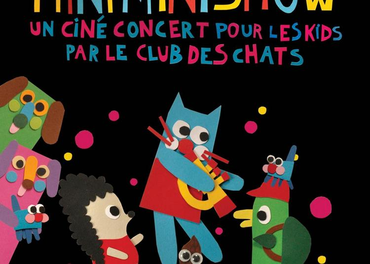 Mini Mini Chat Mini Mini Show  // Le Clubs des Chats à Ambares et Lagrave