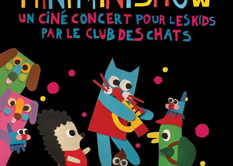 Mini Mini Chat Mini Mini Show à Macon