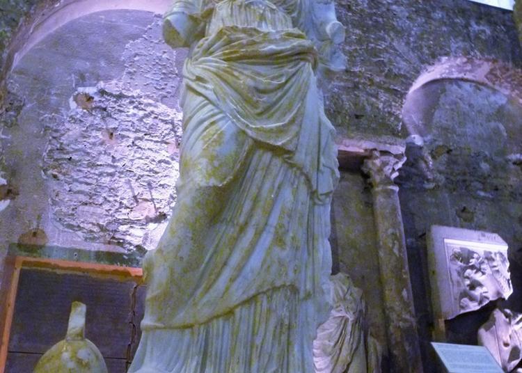 Mise En Lumière Et Sonorisation Du Musée Saint-pierre à Vienne