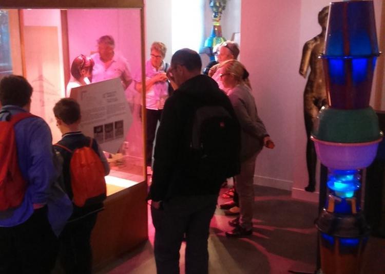 Mise En Lumière Des Collections Par Les Plastiqueurs à Lillebonne