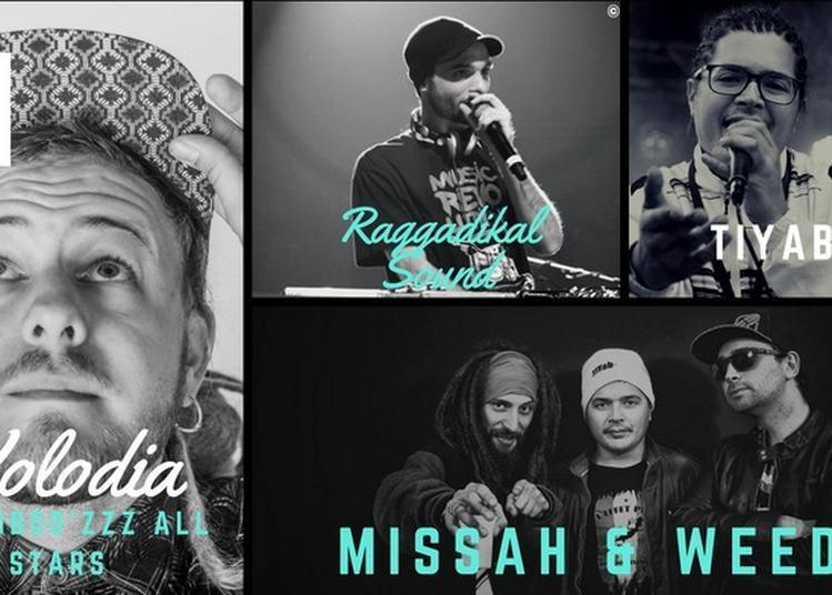 Missah & Weedo + Volodia & Booboo'zzz All Stars + Tiyab + Raggadikal Sound à Thionville
