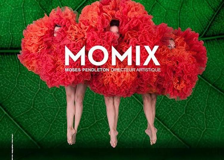 Momix à Paris 8ème