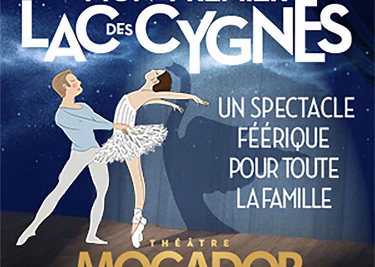 Mon Premier Lac Des Cygnes à Paris 9ème