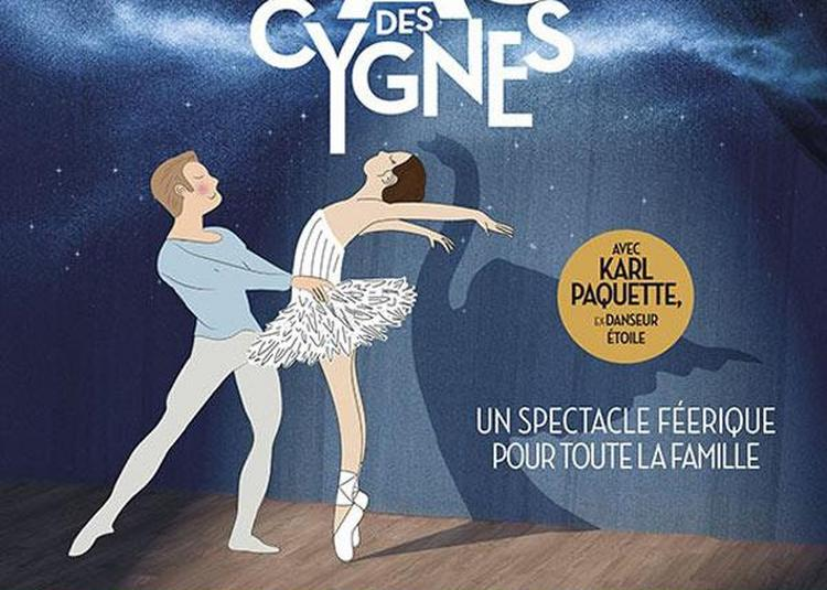 Mon Premier Lac Des Cygnes à Rouen
