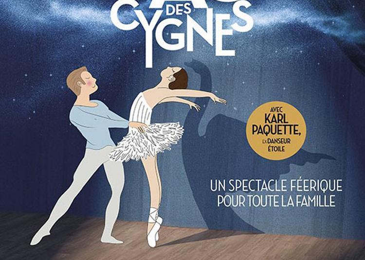 Mon Premier Lac Des Cygnes à Lyon