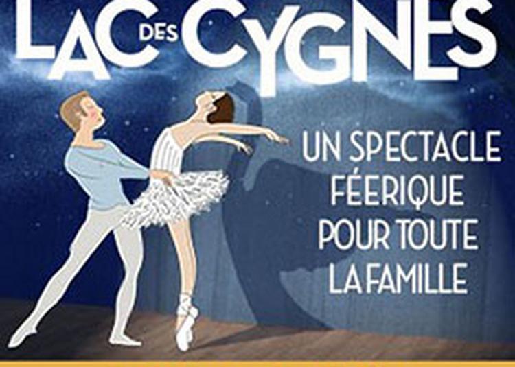 Mon Premier Lac Des Cygnes à Nancy