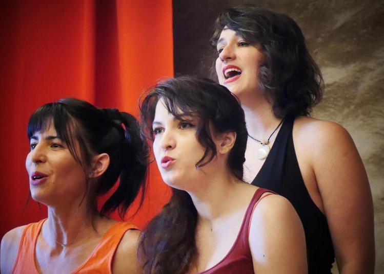 Monas SicoDélicas - Trio Cosmos (Soirée Trio en chantier) à Grenoble