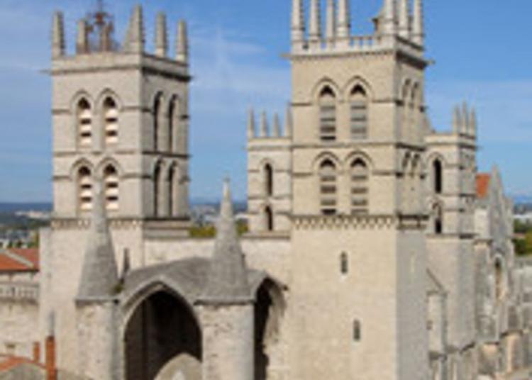 Montée à La Tour Urbain V à Montpellier