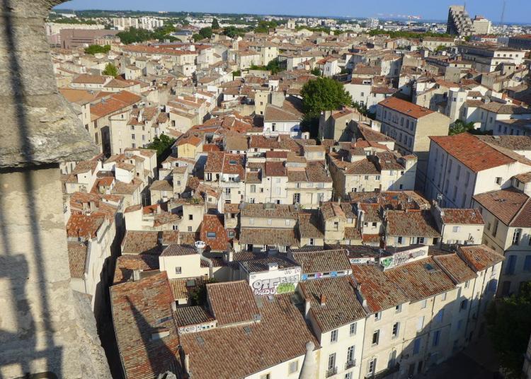 Montée à La Tour Urbain V, Cathédrale Saint Pierre à Montpellier