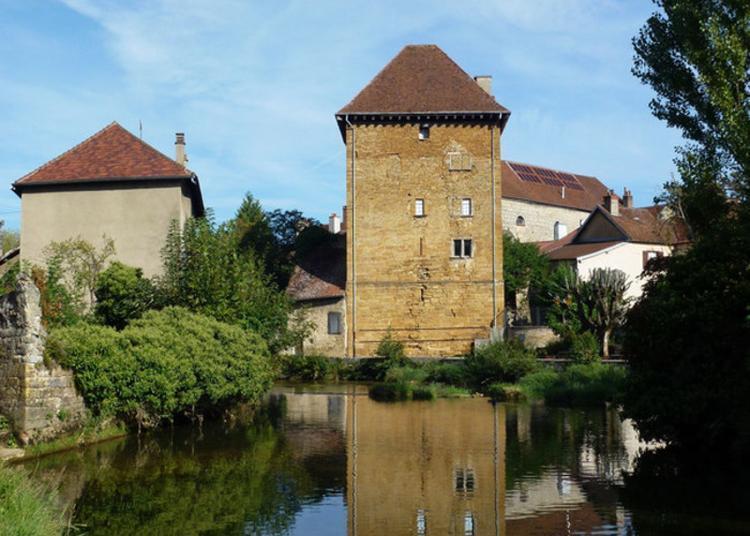 Moulin De La Bourre à Arbois