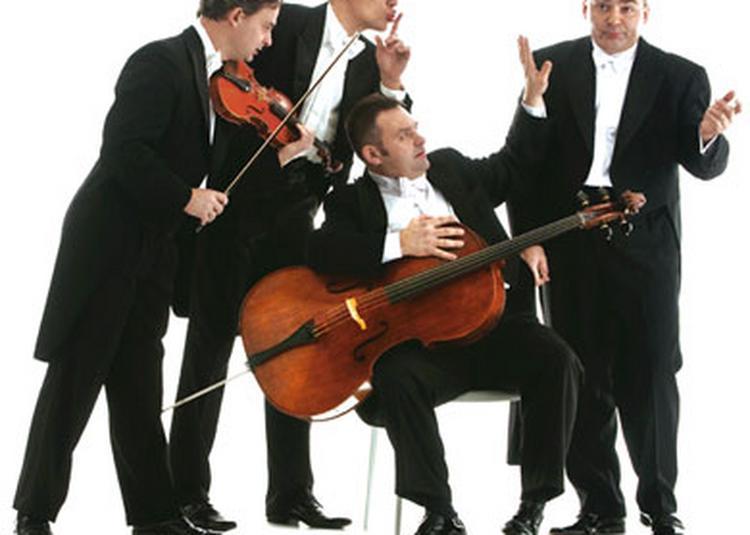 Mozart Group à Saint Malo