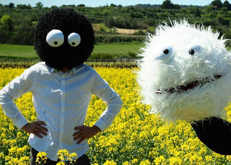 Muppets Rapsody à Nimes