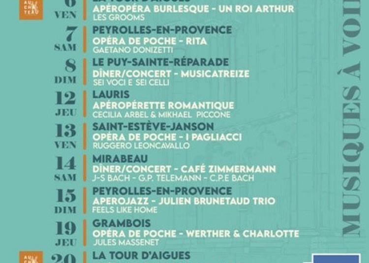 Musicatreize à Le Puy sainte Reparade